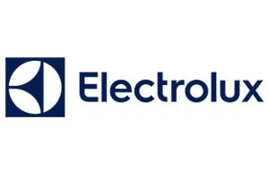 riparazioni ed assistenza elettrolux